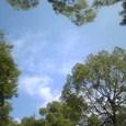 空を仰げば